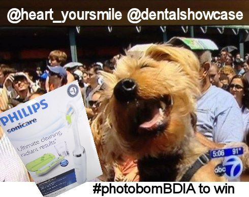 BDIA Dental Showcase photos